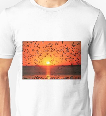 GULLS AT SUNSET Unisex T-Shirt