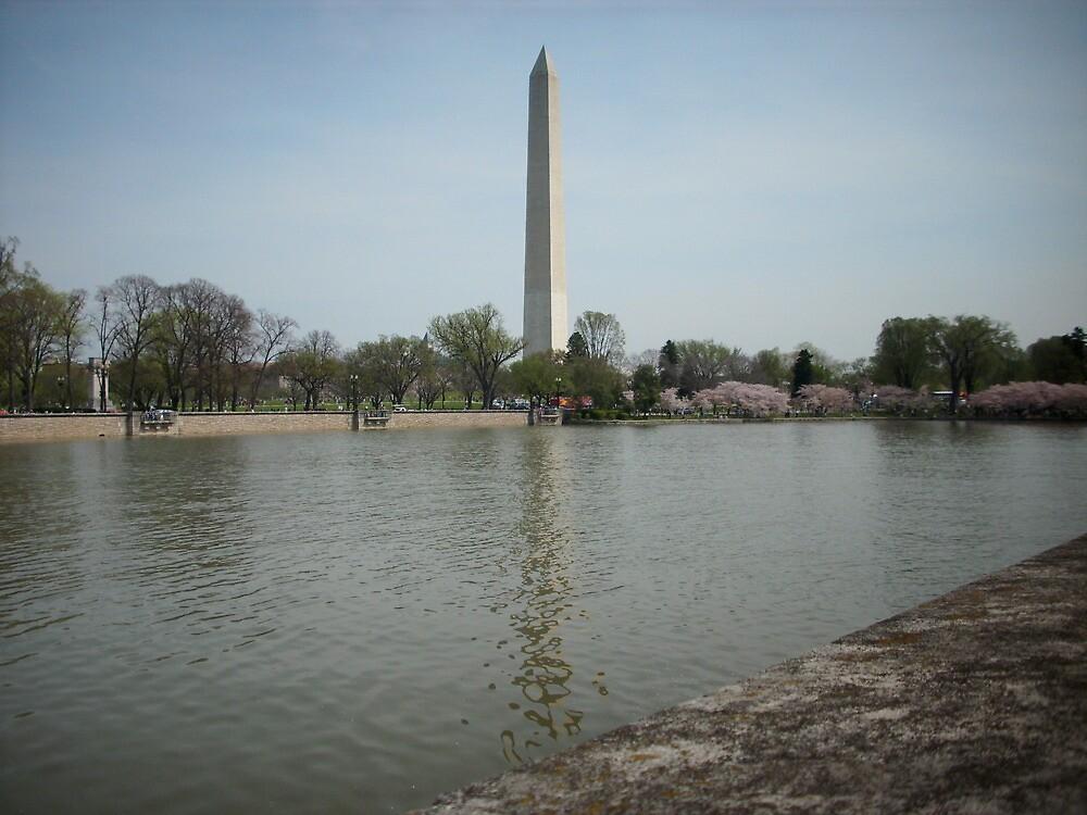 Monument reflecting in Tidal Basin by AJ Belongia