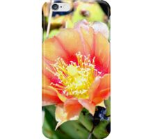 Cactus Flower Bloom iPhone Case/Skin
