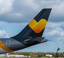 Thomas Cook Airlines Airbus A330 tail in new livery by Russell102