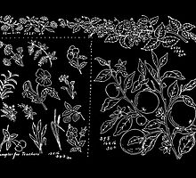 New Sample Book of Our Artistic Perforated Parchment Stamping Patterns Kate Greenaway, John Frederick Ingalls 1886 0245 Inverted by wetdryvac