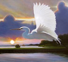 """""""Great White Egret at Sunrise"""" by Charles  Wallis"""