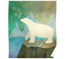 Playful Polar Bear in the Northern Lights Poster