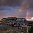Bare Island - La Perouse, NSW by Malcolm Katon