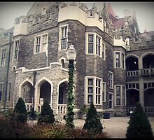 West Wing by CaraSmith2