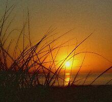 Sunrise by Jodyb