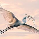 Egret with nesting material by Tarrby