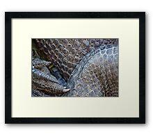 Gator Belly Hand Thigh Framed Print