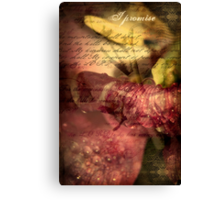 A Covenant of Peace Canvas Print