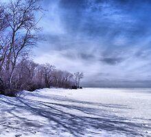 delta beach by Cheryl Dunning