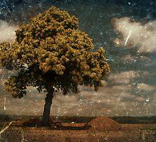 Helvetia Summer by Rebecca Lefferts