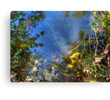 Everglades Reflections Canvas Print