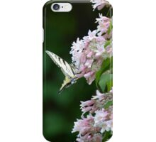 Tiger Swallowtail Butterfly on Honeysuckle iPhone Case/Skin