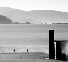 Gulls and Pier by Ultra