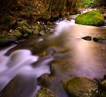 """Liffey River"" by Husky"