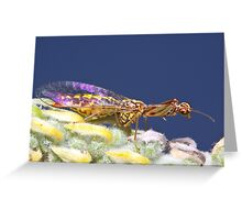 Mantis-fly wing reflection Greeting Card