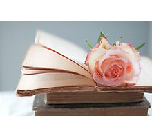 Rose in a Book Photographic Print
