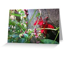 Natural Details Greeting Card