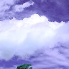 Tree Clouds Hill by Mal Bray