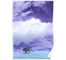 Tree Clouds Hill Poster