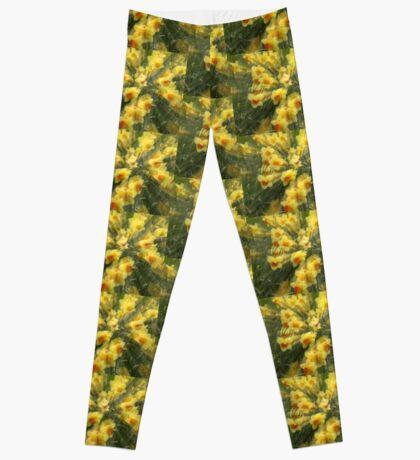 Daffodils Leggings