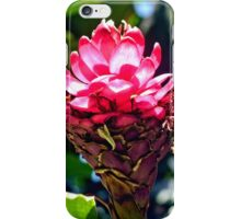 Pink Ginger Tropical Flower Plant iPhone Case/Skin