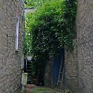 Alley in Kington by Barry Goble