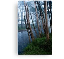 Foggy Morning, Cobark River Canvas Print