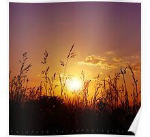 Countryside Sunset Poster