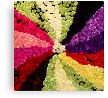 Spectrum of colour Canvas Print