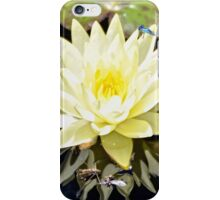 White Water Lily and Dragonfly iPhone Case/Skin