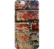 Lichen on Red Bricks iPhone Case/Skin