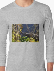Alligator in the grassy knoll Long Sleeve T-Shirt