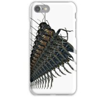 Dance of the Fractal Crickets iPhone Case/Skin