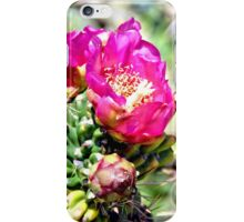 Fuscia Pink Cactus Flower Bloom iPhone Case/Skin