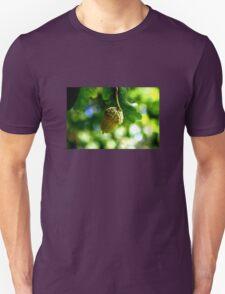From little acorns grow mighty oaks Unisex T-Shirt