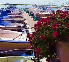 Boats and Yachts by Monika Fuchs