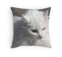 Fluff Resqued & Adopted Throw Pillow
