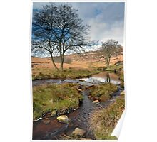 North York Moors Poster