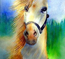 My Horse, My Love, My Friend by Angela  Burman