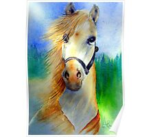 My Horse, My Love, My Friend Poster