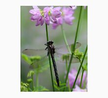 Black Dragonfly and Crown Vetch Unisex T-Shirt