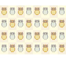 A Parliament of Owls Photographic Print