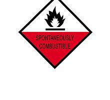 Spontaneously Combustible by Nicholas Averre