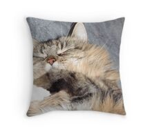Cute when they sleeping  Throw Pillow