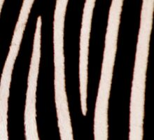 T Shirt Zebra Pattern Sticker