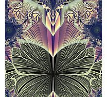 Beautiful Butterfly Ballet Fractal Photographic Print
