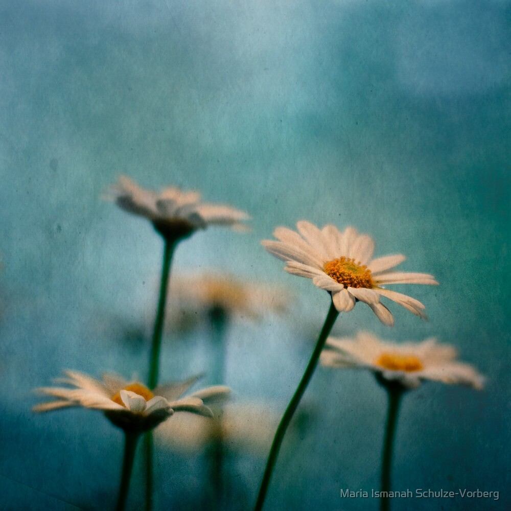 Reaching out by Maria Ismanah Schulze-Vorberg