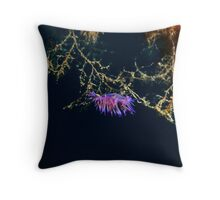 flabellina affinis Throw Pillow