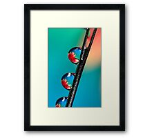 Blooming Needle Framed Print
